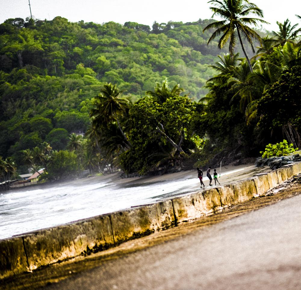 Vert-Dapper-Lou-Trinidad-Tobago-2016-5.jpg