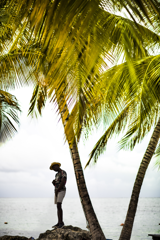 Vert-Dapper-Lou-Trinidad-Tobago-2016-4.jpg