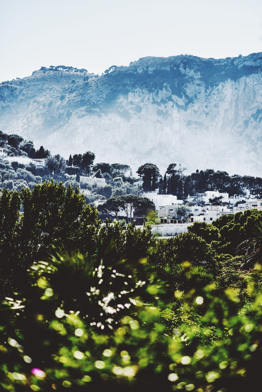 Veni-Vidi-Amavi-Dapper-Lou-Capri-Italy-Travel-Inspiration-2016-Blog-1.JPG