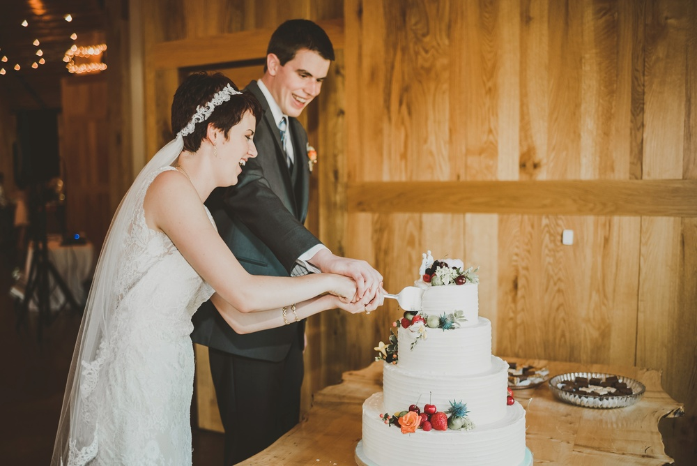 Eclectic Garden Celebration Farm Wedding Wisconsin Photographer_3246.jpg