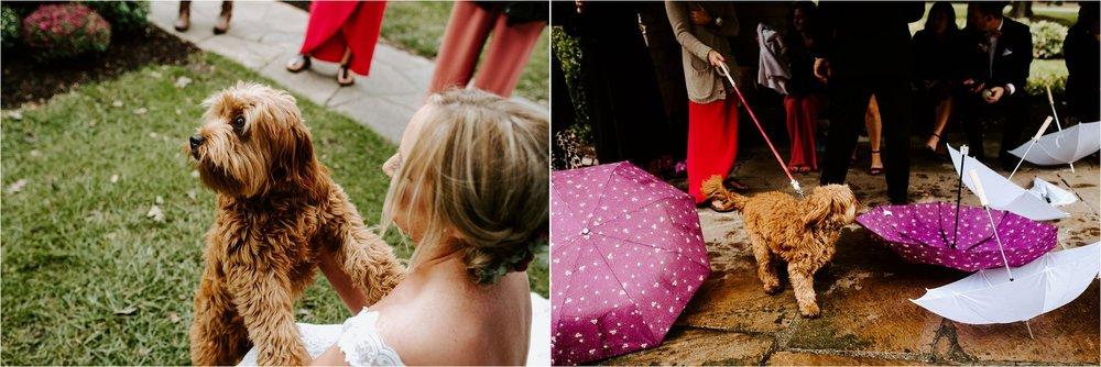 Wooly's Des Moines Rose Garden Concert Venue Wedding_3292.jpg