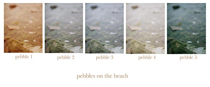 pebblesblog.jpg