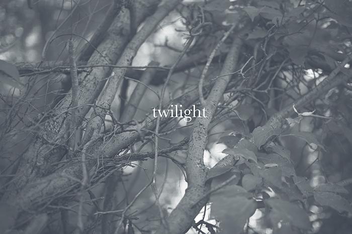 twilightblog.jpg