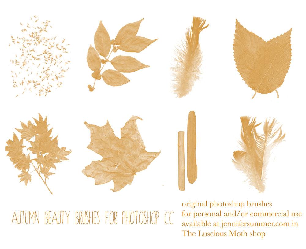 autumnbeautyphotoshopbrushes.jpg