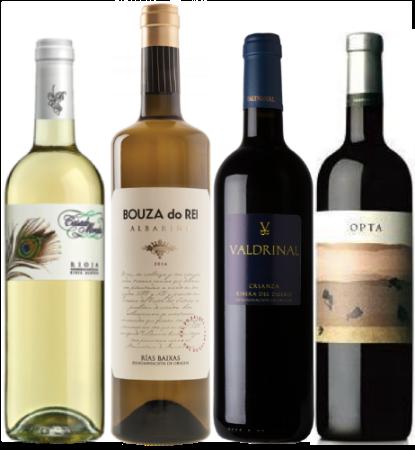 Rioja Blanca Viura - Casado Morales Albariño - Bouza do Rei Ribero del Duero - ValdrinalCrianza Opta - D.O. Pago Calzadilla