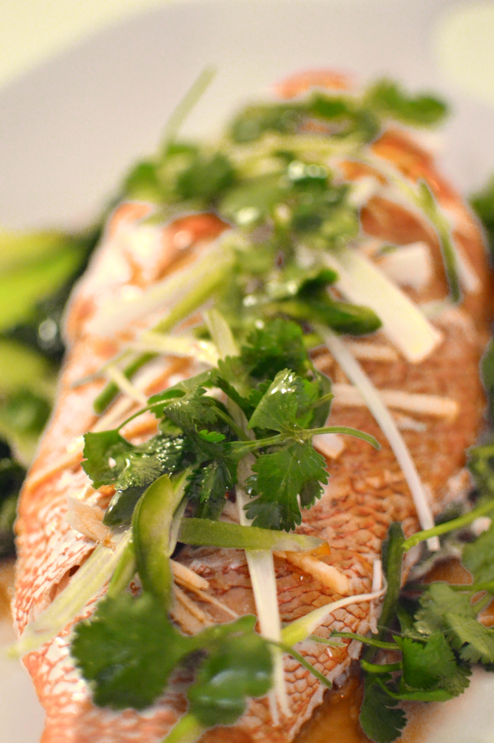 Chinese-Lunar-New-Year-Steamed-Whole-Red-Snapper-Fish-Ginger-Scallions-10.jpg