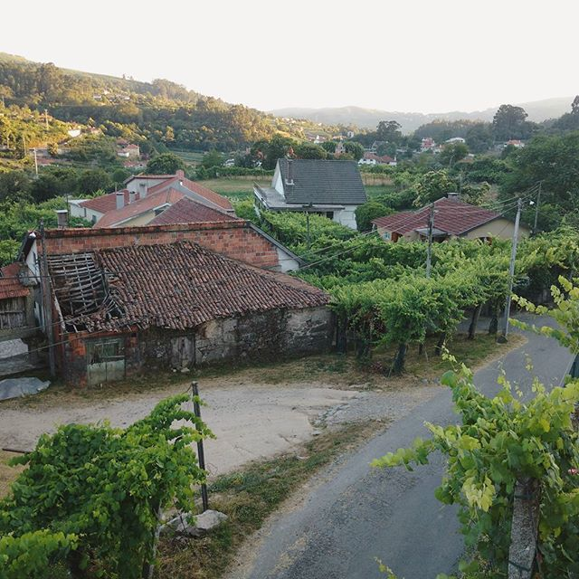 #happyportugalday to all my family in Portugal! #felizdiadeportugal . . . . . . #north #minho #vilaverde #portugal #valley #picoftheday #instapic #family #satuday #landscape #view #casa