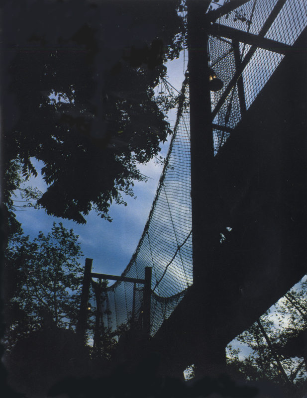Camp Snoopy_suspension bridge photo 3384027510[K].JPG