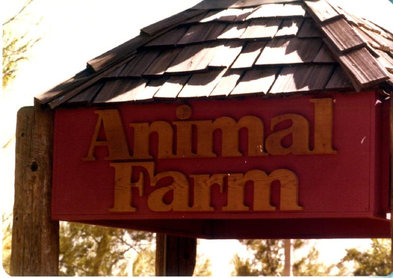 MAGIC MOUNTAIN Animal Farm 01 3484097013[K].JPG