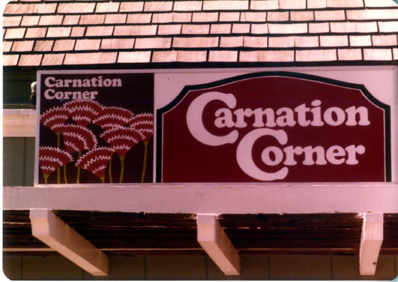 MAGIC MOUNTAIN Carnation Corner 3484098521[K].JPG