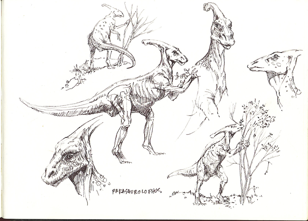 dinosaurs sketch1 2358444119[K].jpg
