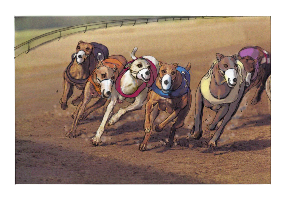 Ruperts Greyhounds