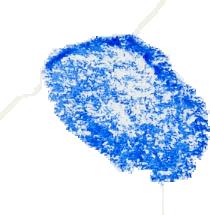 crayon_seaglass_0019_Layer-20.png