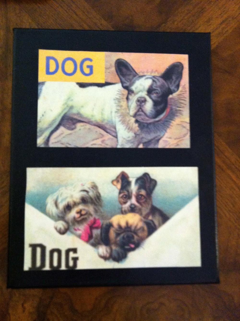 WC_Dog10.jpg