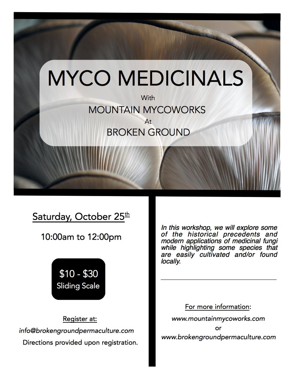 medicinals Flier.jpg