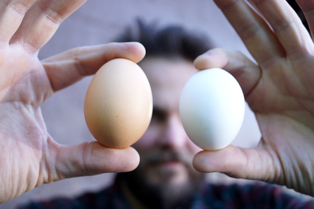 Feast your eyes on these beautiful local eggs