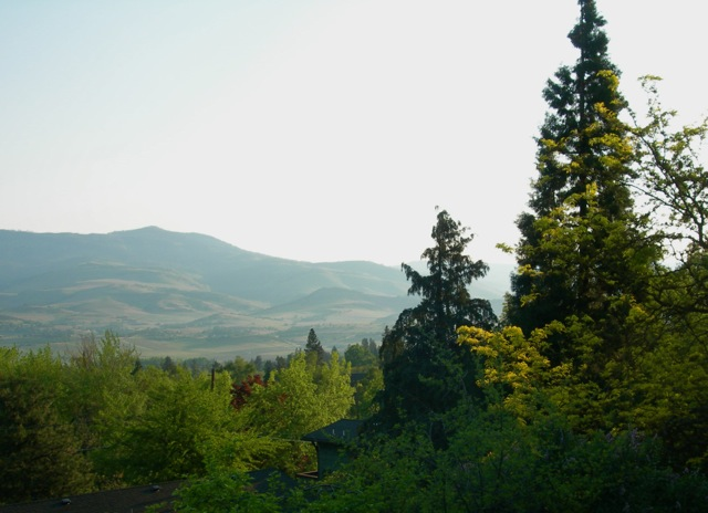 This will be my view when I get to my son's home later today.  Grizzly Peak, Ashland, Oregon.