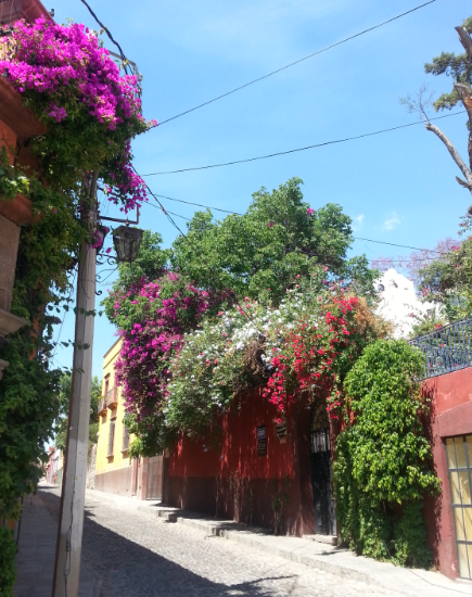 Walk through San Miguel