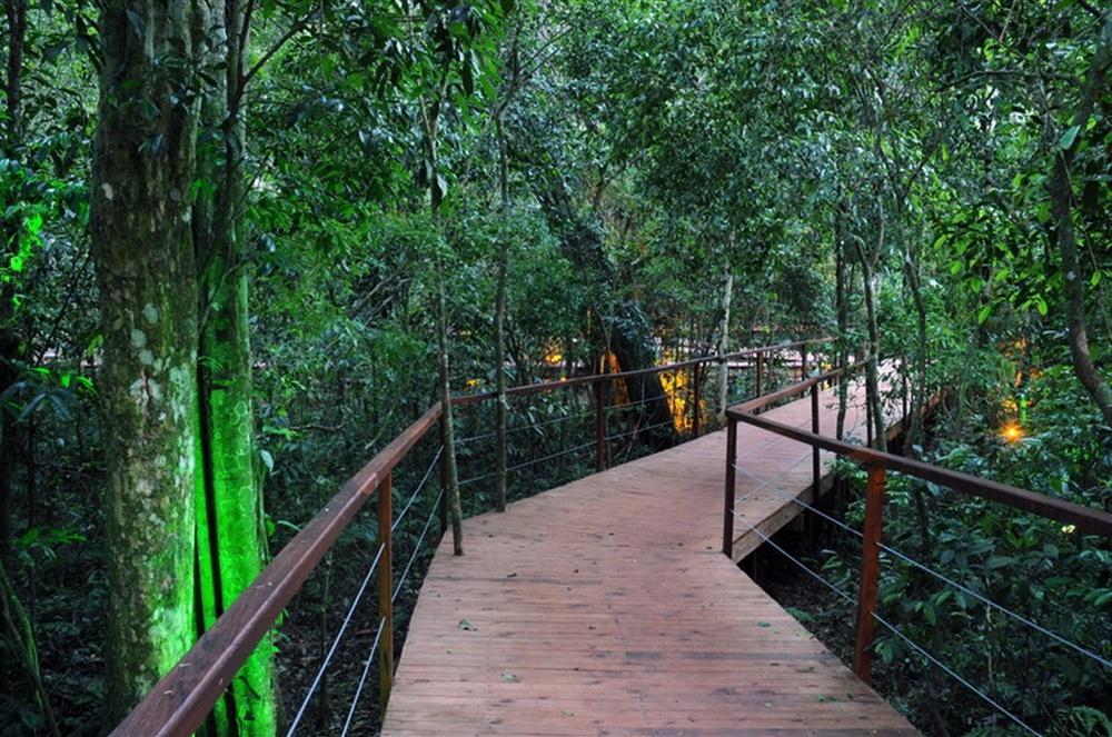 04-la-cantera-lodge-de-la-selva-iguaz-a-14-redimensionar.jpg.1024x0.jpg