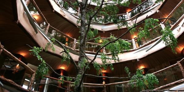 baobab-hotel-spa_22_0.jpg