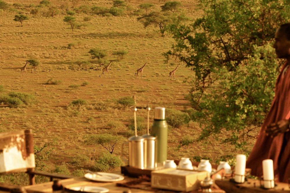 Shu'mata mess view giraffes.jpeg
