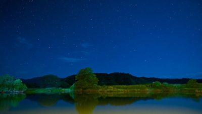 standard_Daintree_River_by_night_-_Adam_Crews_photos.jpg