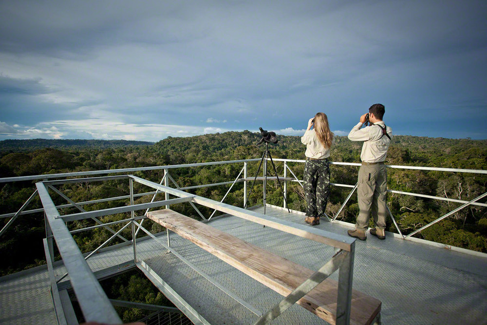 Cristalino-Jungle-Lodge---Ecotourists-and-view-of-Canopy-Tower---Samuel-Melim-2.jpg