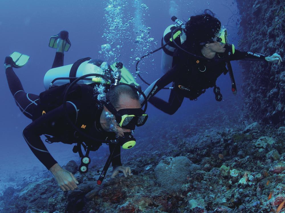 divers_high.jpg