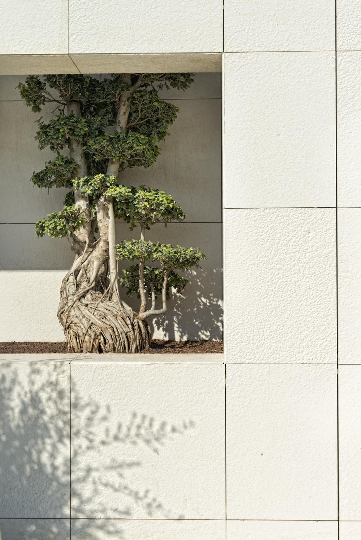 D-Hotel_Maris_Villa_Details_Entrance_jpeg.JPG