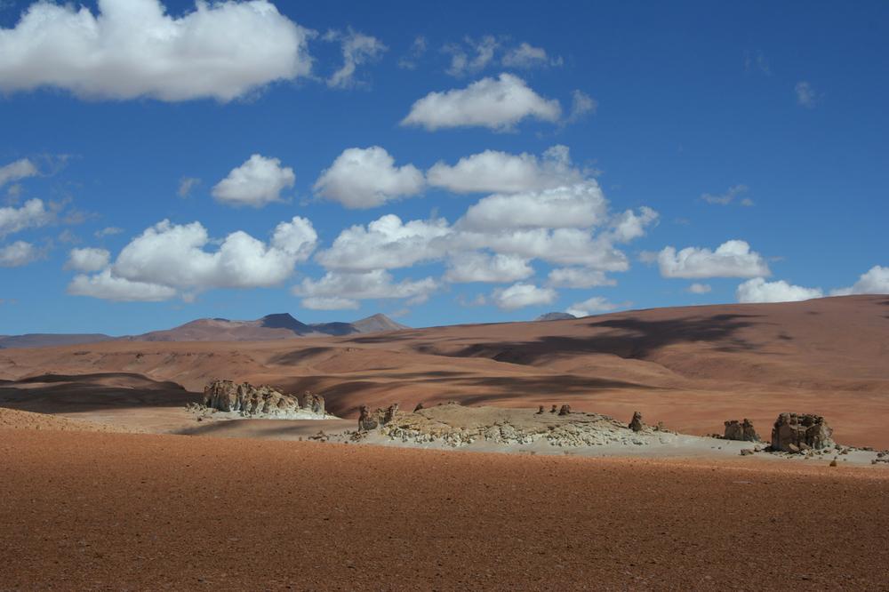 Awasi Atacama (43).jpg