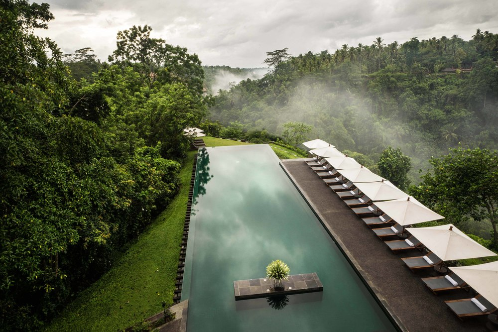 Alila Ubud - Pool by day 01.jpg