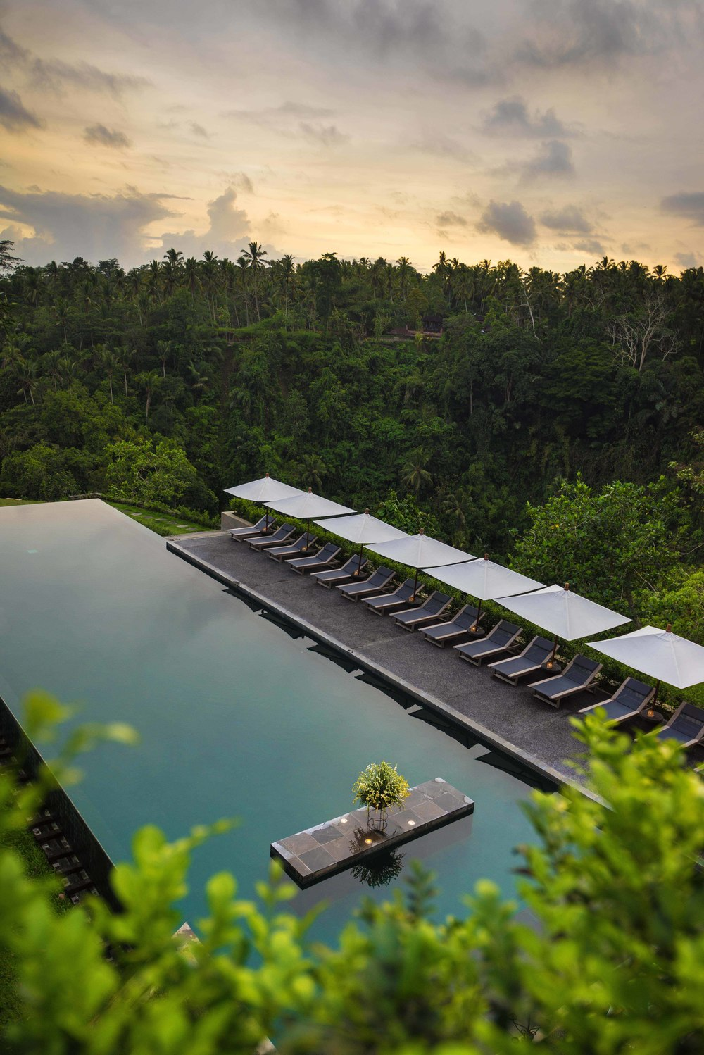 Alila Ubud - Pool by day 02.jpg