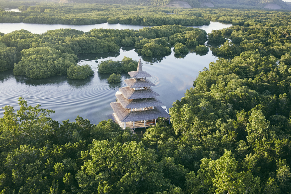 Aereal resort Mangroves 1.jpg