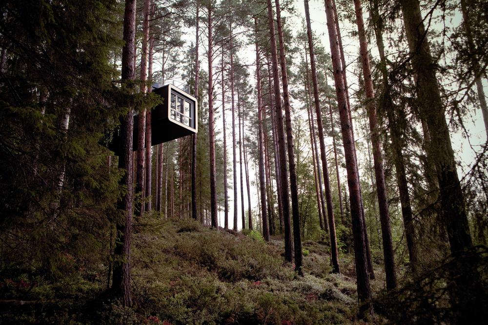 Image property of Treehotel Sweden