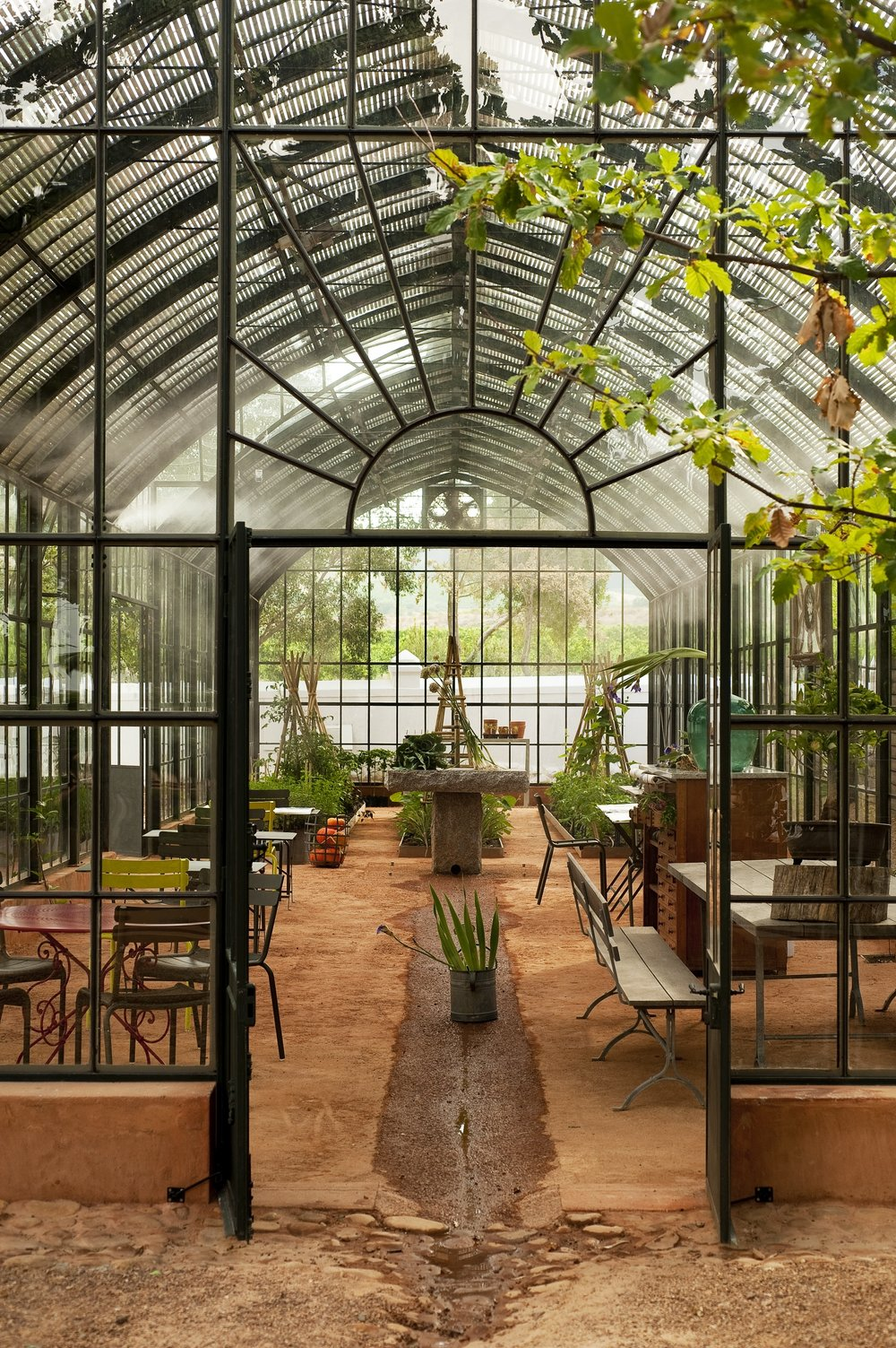 1.TEAROOM IN GREENHOUSE.jpg