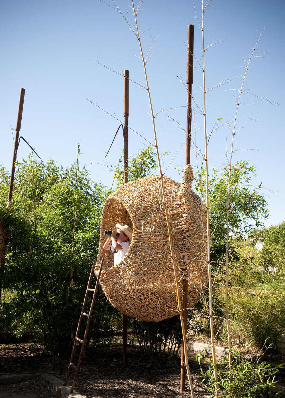 12.Bird watching at Babylonstoren! Porky Hefer designed these human-sized nests among the reeds.jpg