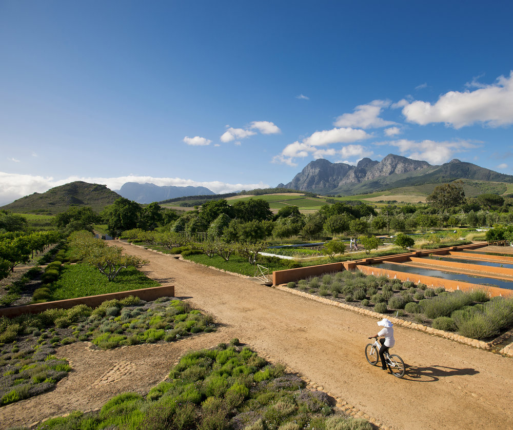 21.Babylonstoren Hill ahead, Simonsberg at 2 o'clock, kitchen garden all around.jpg