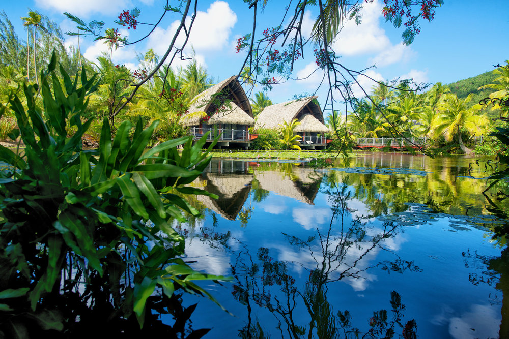 Image property of Maitai Lapita Village