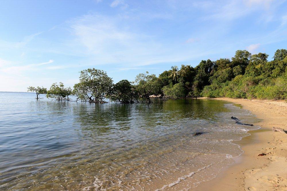 Cempedak Island 4.JPG