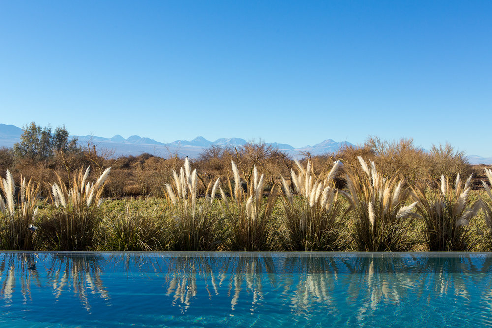 TA outdoor pool view.jpg
