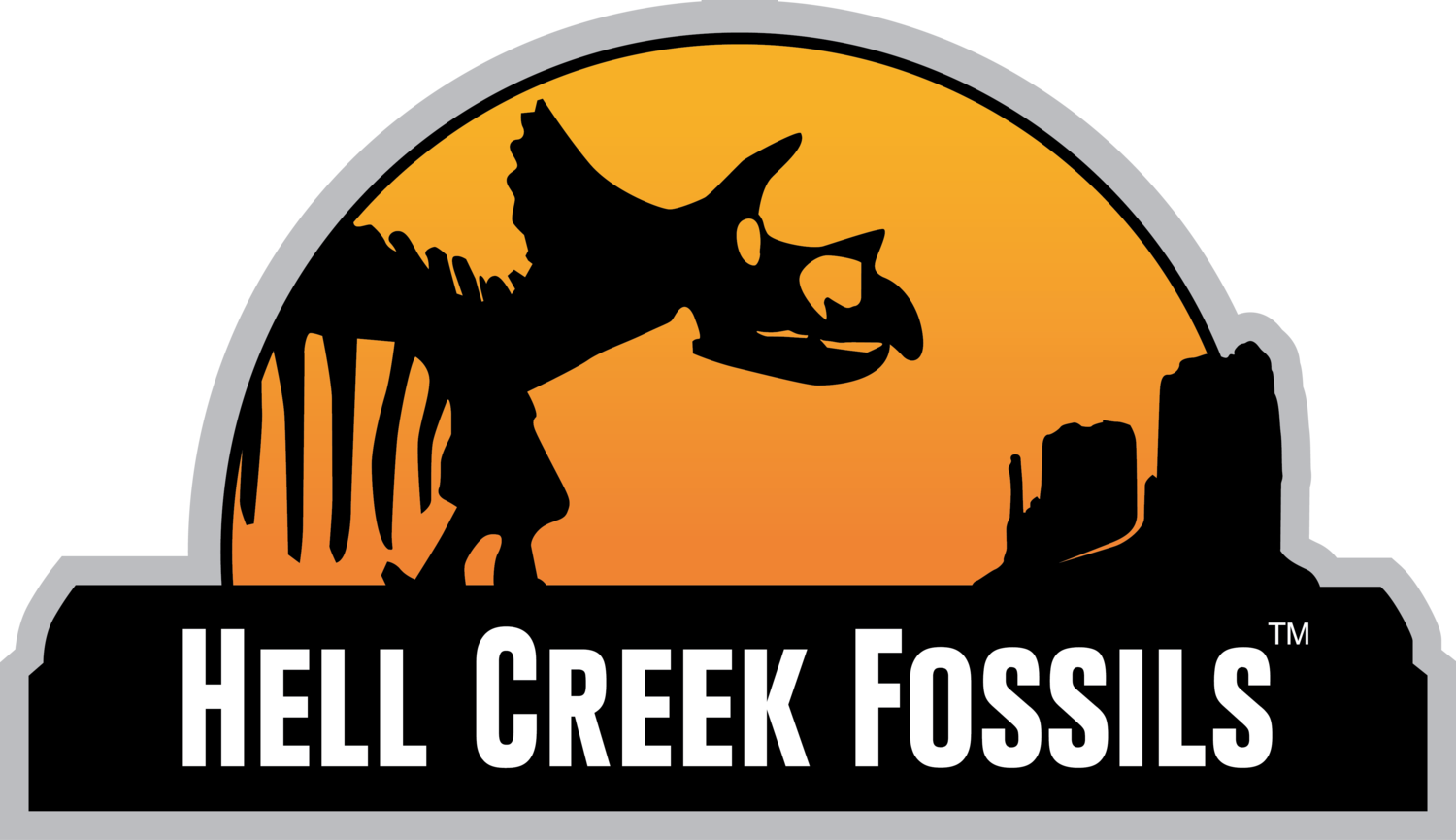 Hell Creek Fossils