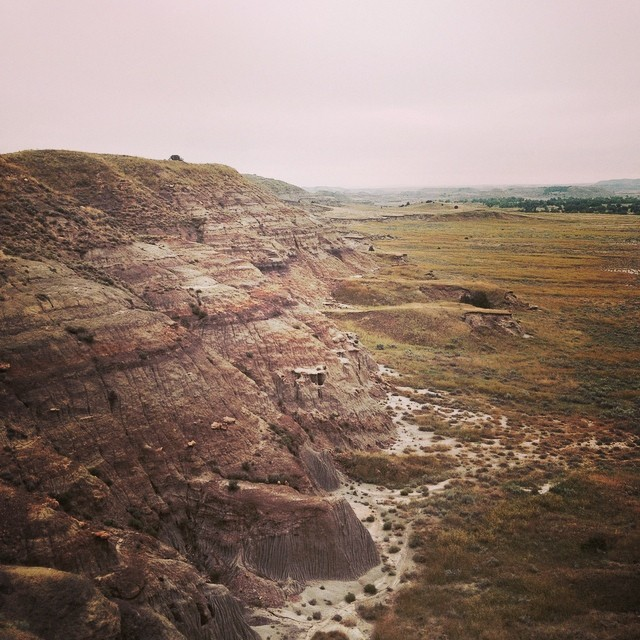 Prospecting the Hell Creek Formation. #fossils #dinosaurs