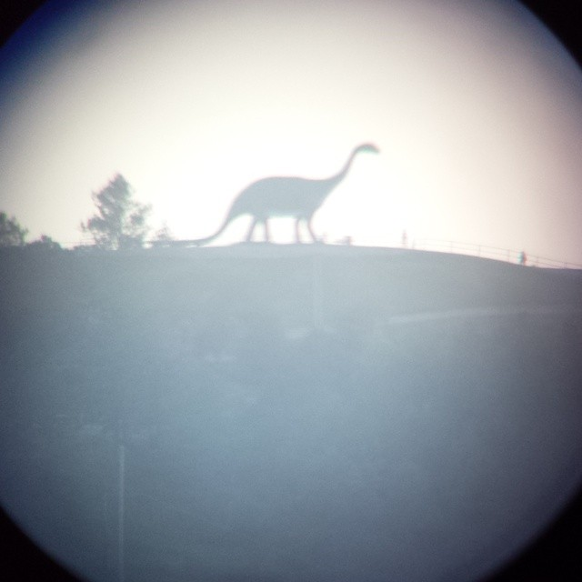 Found a live one in #Rapid City, our new home. #Dinosaur Sighting