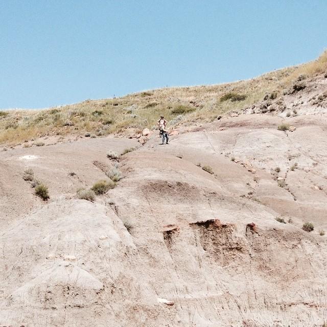 On the hillside.  #hcfossils #prospecting