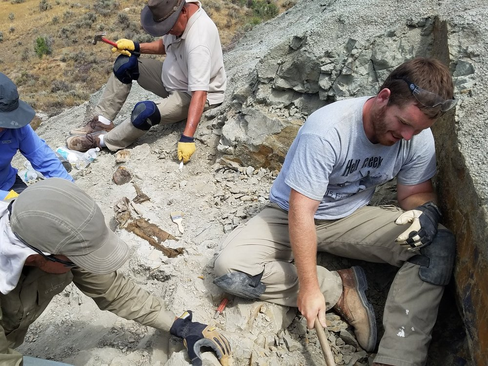 Adam Schroeder: Field Director/Owner I'm a Teacher and Paleontologist currently working in Kansas. I have been working in the Hell Creek Formation of North Dakota and Montana since early 2009.  We can offer experience and knowledge that can only come from years of hard work in the Field. My research focuses on biological extinction and recovery across the K-Pg boundary in the Hell Creek Formation. We are all looking forward to our next paleontological adventure!                                                                                      Email: hcfossils@gmail.com       Phone: 785-443-0982