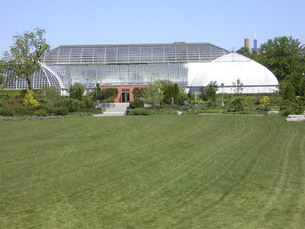 The 442 metre, 108 storey Willis Tower, (the artist formerly known as the Sears Tower) can be seen above the Palm House.