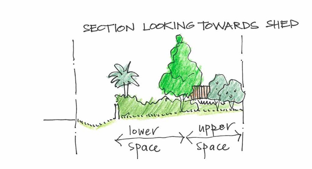 The tree would act as turning point or fulcrum between these two sections of the garden, allowing them to read as their own particular places. This tree would also start to screen the shed, so it would be less visible from inside the house.
