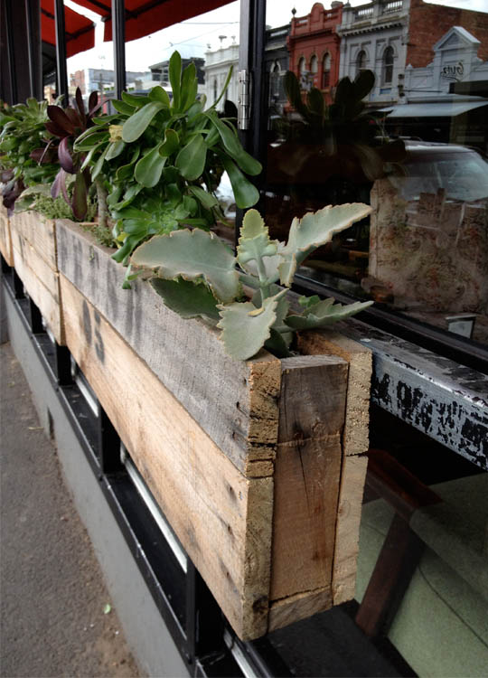 This tiny timber planter in Melbourne contains a little cluster of succulents.