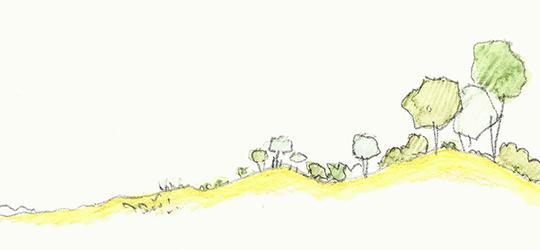Landscapology_Dune5.jpg