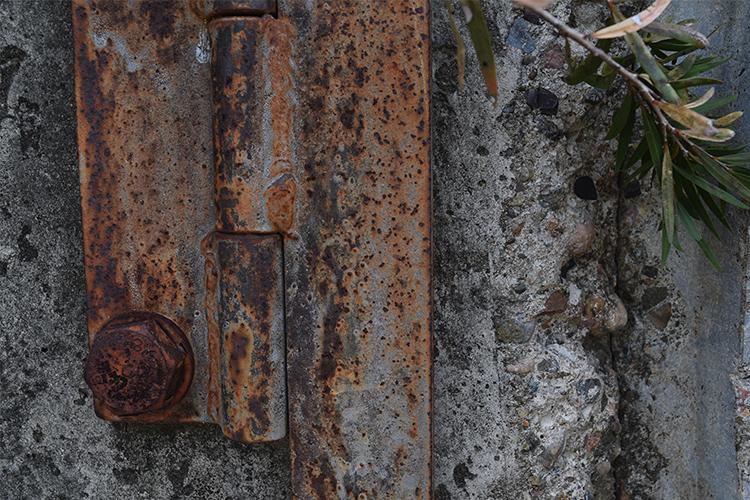 Landscapology_November14.jpg